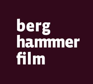 BHFi-Logo-4c-neg-300x270